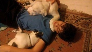 Sean And His Much Loved Dogs