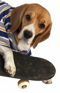 Kids Page - Beagle