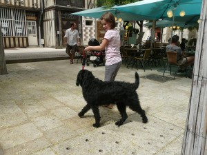 Dogs Encourage Healthy Living Habits