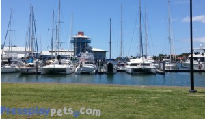 The Boat Harbour - A Boaties Piece Of Heaven