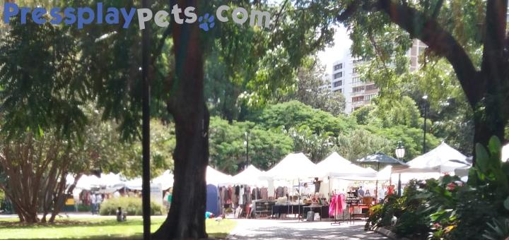 Brisbane Riverside Garden Markets (7)