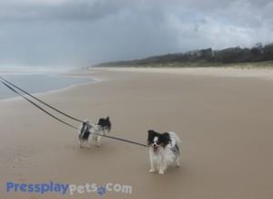 The Rain Clouds Rolling In At Peregian Beach