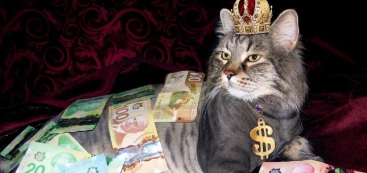 i can make you rich pdf